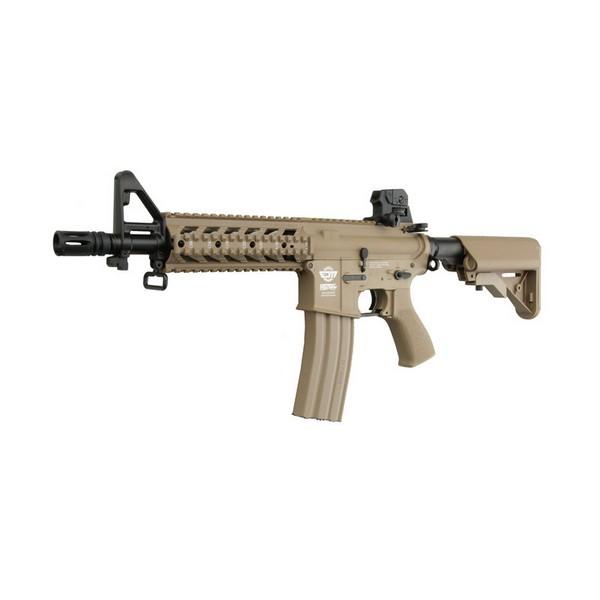 Réplique CM16 Raider Tan AEG G&G
